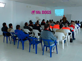 Cursos Mr.Dogs - Pepe Caliu