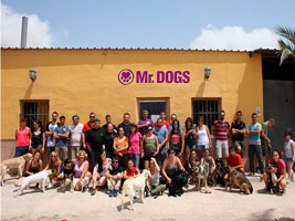 Cursos Mr.Dogs - Pedro Salas