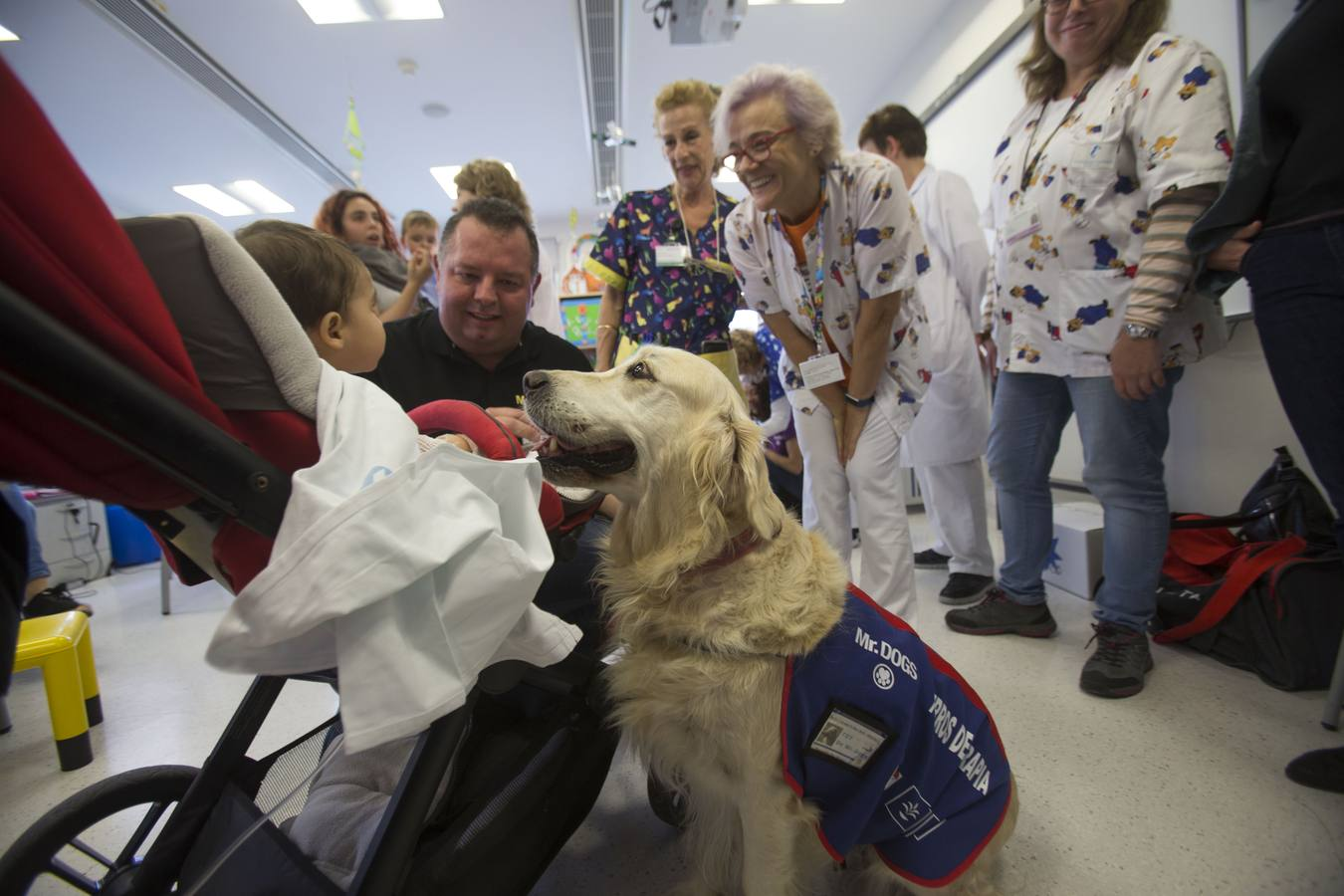 Proyecto Dr.Guau Mr.Dogs Terapia con perros Hospital Santa Lucia